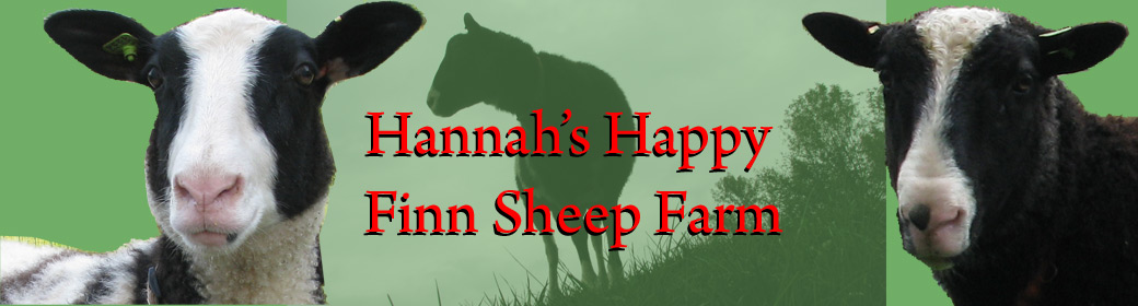Hannah's Happy Finsheep Farm